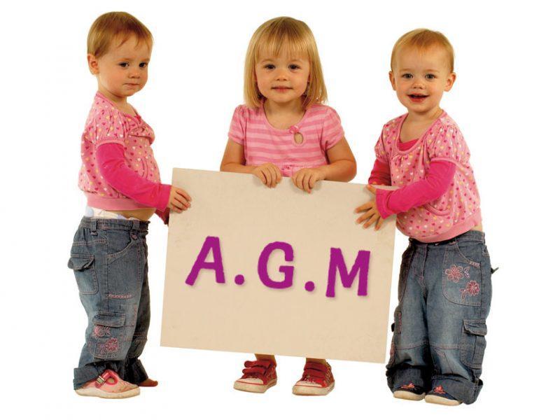 News Home-Start Kettering AGM